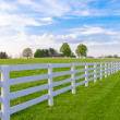 Stock Photo: Spring evening at country.