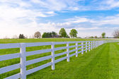 Spring evening at country. — Stock Photo