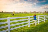 женщина, наслаждаясь видом на загородную местность с зелеными лугами и закуски — Стоковое фото