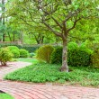 Formal garden at spring — Stock Photo