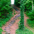 Stairs made of old tires in the  green forest. — Stock Photo