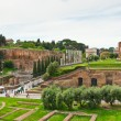 Ruins of Roman Forum. Rome, Italy — Stock Photo