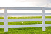 White wooden horse fence on country site. — Стоковое фото