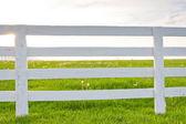Weißes Holzpferd Zaun auf Länderseite. — Stockfoto