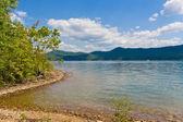 Vista verão um lago local e bela floresta sobre o lago sho — Foto Stock