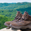 Stock Photo: Pair of hiking boots in front of mountain forest landscape.