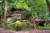 Floresta de montanha e ponte de pedra natural. — Foto Stock