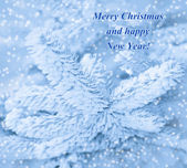 Happy New Year card with frost pine and snow. — Stock Photo
