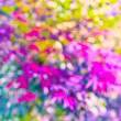Abstract blurred background. — Stock Photo #40302999