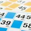 Bingo cards and number forty four — Stock Photo