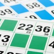 Bingo cards and number thirteen — Stock Photo #13579737