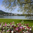 Annecy lake and city with flowerbed — Stock Photo