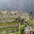 Overview of Machu Picchu in Peru — Stock Photo