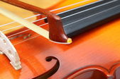 Close up of violin — Stock Photo