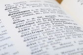 French Dictionary at the word Dictonary — Stock Photo