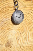 Old pocket watch and rings of a tree trunk — Stock Photo
