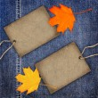 Stock Photo: Autumn denim texture background with card label