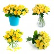 Stock Photo: Yellow rose bouquet set isolated on white