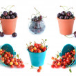 The bucket of cherries set isolated on the white — Stock Photo #12726931
