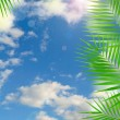 Tropical background with lens flare effect — Stock Photo