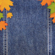 Denim scrapbook background with autumn leaves — Stock Photo
