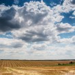 Wonderful panorama of countryside with cloudy sky and harvested — Stock Photo