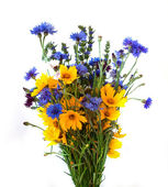Bouquet from ears and field flowers isolated on white background — Stok fotoğraf