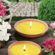 Stock Photo: Lemongrass candles for mosquito's prick