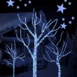 Stars on background of defocused blue lights and tree — Foto Stock
