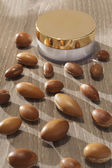 Seeds of argan a close up on wood — Stock Photo