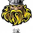 Viking — Stock Vector #20597607