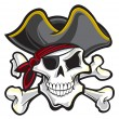 Pirate skull — Stock Vector #21477301