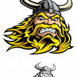 Viking warrior — Stock Vector #21478209