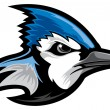 Vector de stock : Blue Jay