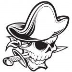 Pirate skull — Stock Vector #21583311