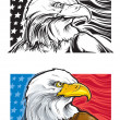 Bald Eagle — Stock Vector #21666895