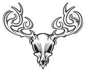 Deer skull — Stock Vector
