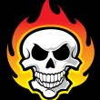 Skull with flames — Stock Vector #22048453