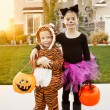 Kids Going Trick or Treating on Halloween — Stock Photo #40416439