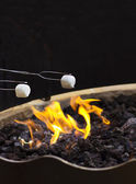 Roasting marshmallows — Stock Photo