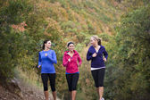 Group of Women Jogging Together — Stock Photo