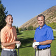 Two male golfers playing golf together — Stock Photo