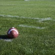 Stock Photo: Football on field
