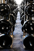 Long row of new weight training equipment at a gym — Stock Photo