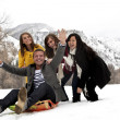 Stock Photo: Young Adults snow sledding