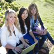 Group of Young, attractive female students outside studying — Foto Stock