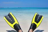 Scuba Fins on the Beach — Stock Photo