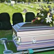 Funeral Casket — Stock Photo #41363957