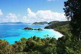 Aerial view of Trunk Bay, St. John, U.S. Virgin Islands — Stock Photo