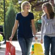 Female Shoppers — Stock Photo #41591931